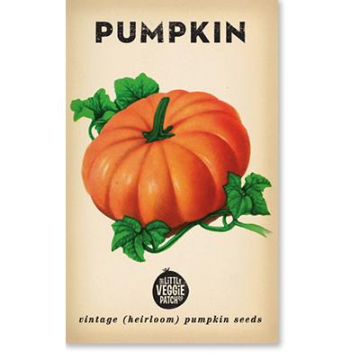 PUMPKIN 'SMALL SUGAR' HEIRLOOM SEEDS