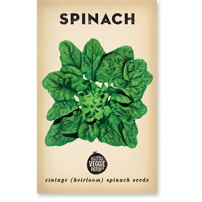 SPINACH 'BLOOMSDALE' HEIRLOOM SEEDS $5.00 Quantity 1