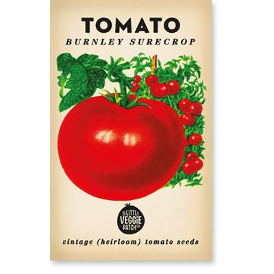TOMATO 'BURNLEY SURECROP' HEIRLOOM SEEDSv